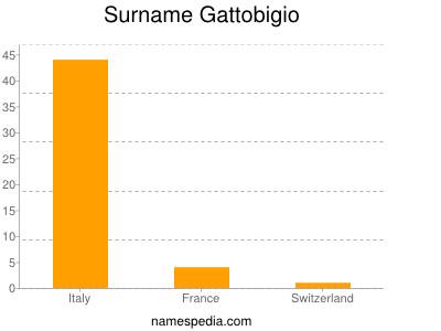 Surname Gattobigio
