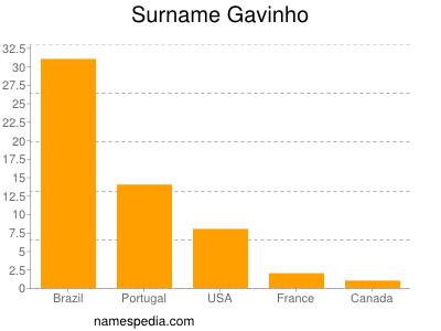 Surname Gavinho
