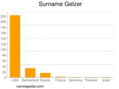 Surname Gelzer