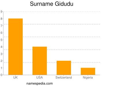 Surname Gidudu