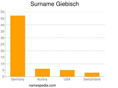 Surname Giebisch