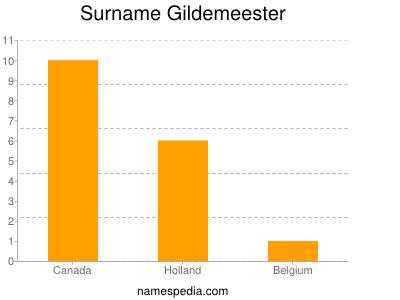 Surname Gildemeester