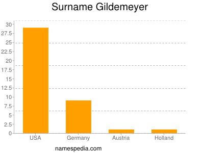 Surname Gildemeyer
