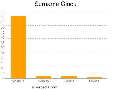 Surname Gincul