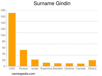 Surname Gindin