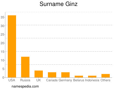 Surname Ginz