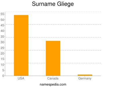 Surname Gliege
