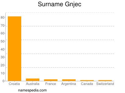 Surname Gnjec