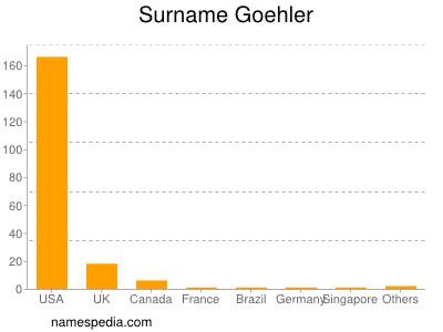 Surname Goehler