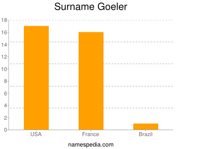 Surname Goeler