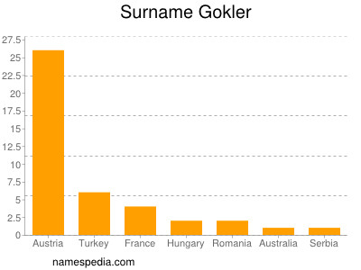 Surname Gokler