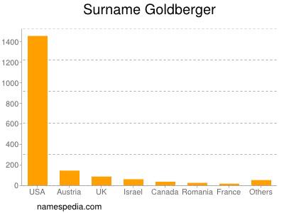 Surname Goldberger