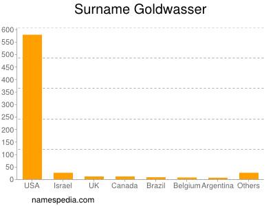 Surname Goldwasser