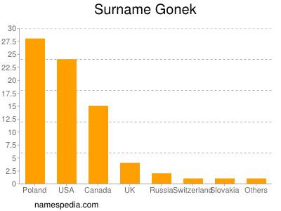 Surname Gonek