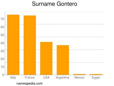 Surname Gontero