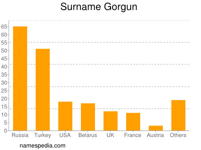 Surname Gorgun