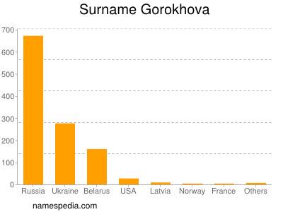 Surname Gorokhova