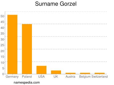 Surname Gorzel