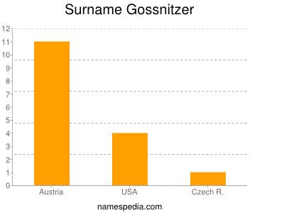 Surname Gossnitzer