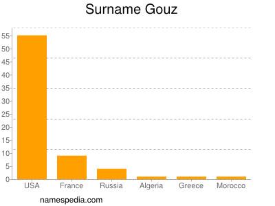 Surname Gouz