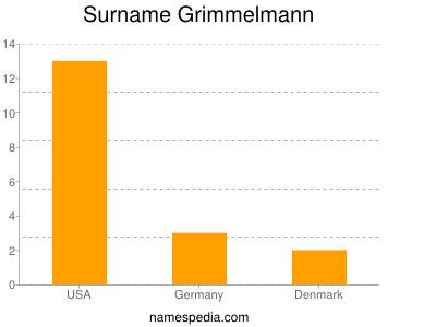 Surname Grimmelmann