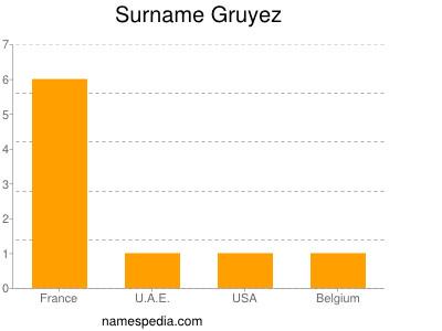 Surname Gruyez