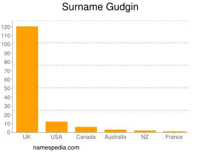 Surname Gudgin