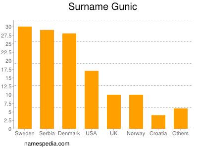 Surname Gunic