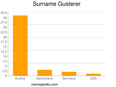 Surname Gusterer