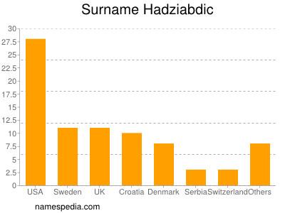 Surname Hadziabdic