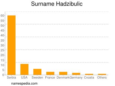 Surname Hadzibulic