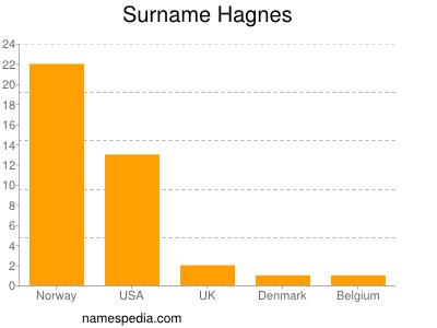 Surname Hagnes