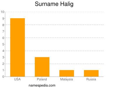 Surname Halig