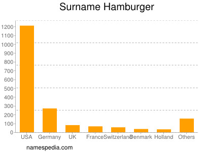 Surname Hamburger