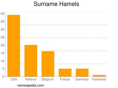 Surname Hamels