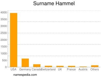 Surname Hammel