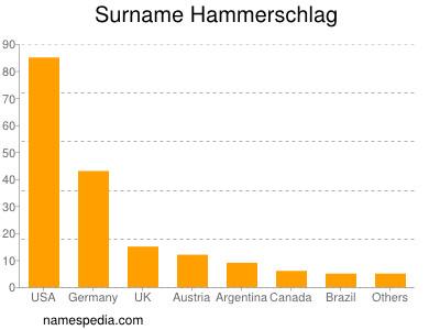 Surname Hammerschlag