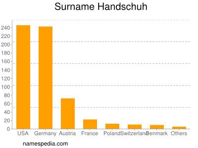 Surname Handschuh