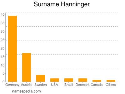 Surname Hanninger