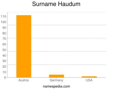 Surname Haudum