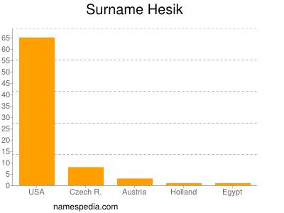 Surname Hesik