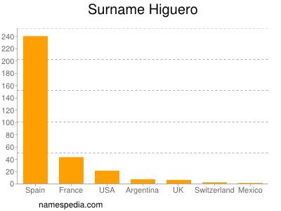 Surname Higuero