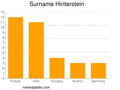 Surname Hinterstein