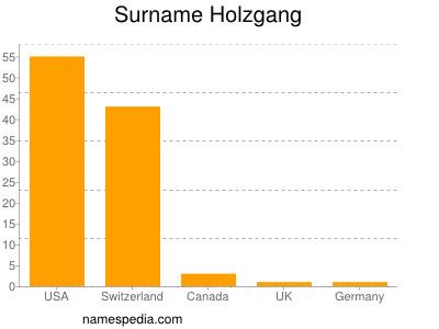 Surname Holzgang
