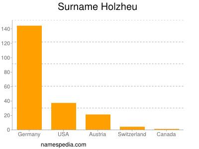 Surname Holzheu