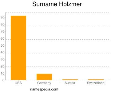 Surname Holzmer