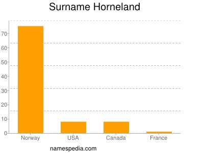 Surname Horneland