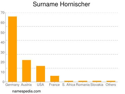 Surname Hornischer