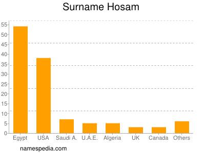 Surname Hosam