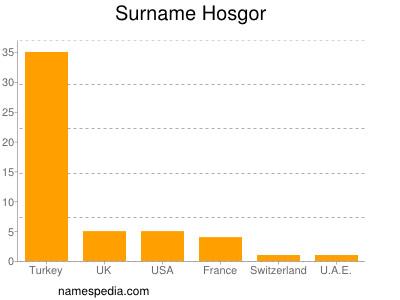 Surname Hosgor